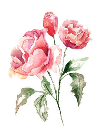 botanical branch: Beautiful flowers, Watercolor painting  Stock Photo