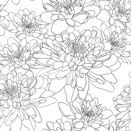 Floral seamless wallpaper with chrysanthemum flowers  Vector