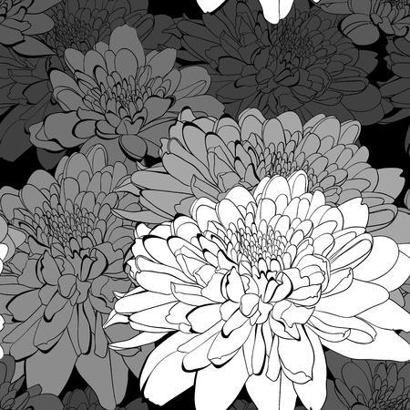 Patrón transparente blanco y negro con flores de crisantemo