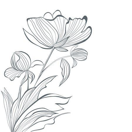 flores vintage: Stylized Peony flowers