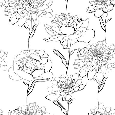 Chrysanthemum: Black and white seamless pattern with a lot of flowers