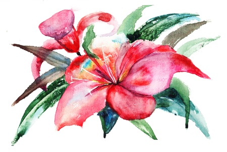 bloom: Lily flowers, watercolor illustration