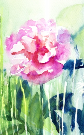 Beautiful Peony flower, Watercolor painting  photo