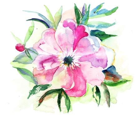 Stylized Pink flower, watercolor illustration  illustration