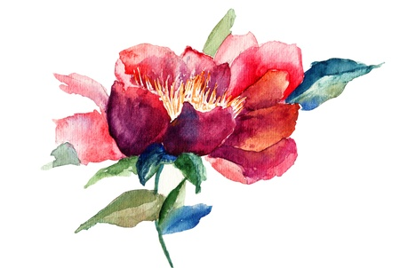 watercolor flower: Decorative red flower, watercolor illustration