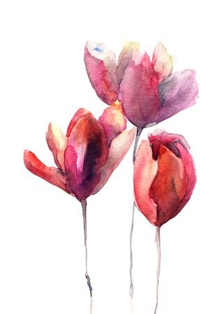Tulipanes flores Foto de archivo