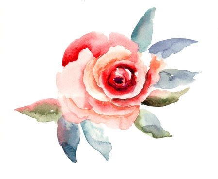 Rose flowers illustration, watercolor painting  Stock Photo