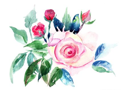Decorative Roses flowers, Watercolor painting Stock Photo - 15810855