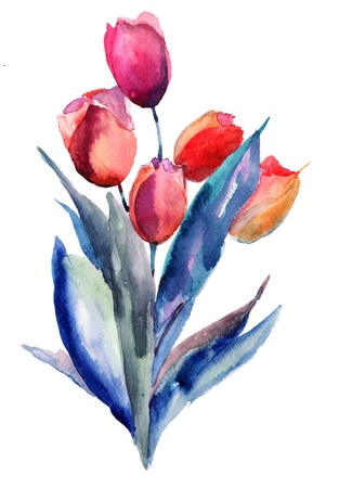 watercolor painting: Tulips flowers