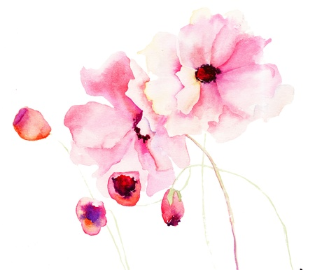 watercolour: Colorful pink flowers, watercolor illustration