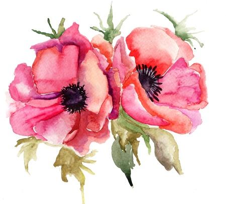 amapola: Flores de la amapola estilizada ilustración Foto de archivo