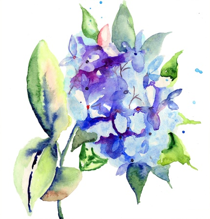 Beautiful blue flowers, watercolor illustration  illustration