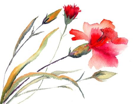 Czerwone goździki kwitnienie, malarstwo akwarela