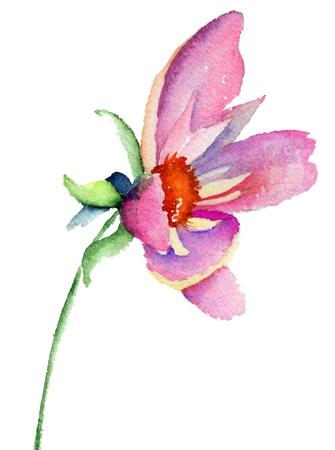 Dahlia flower, watercolor illustration  Stock Photo