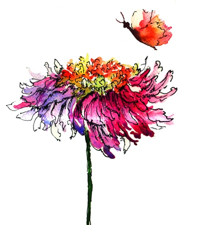 Watercolor illustration with Chrysanthemum flower illustration