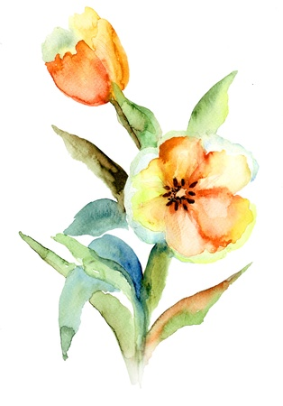 Yellow Tulips flowers, Watercolor painting  photo