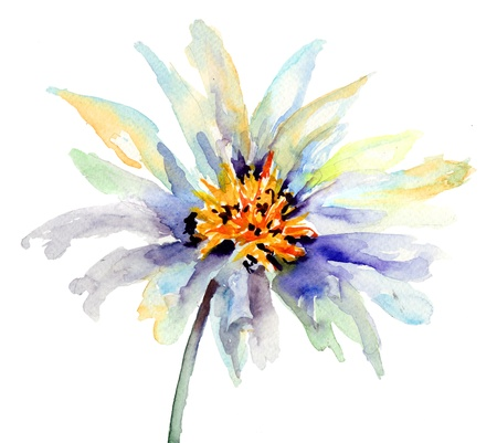 The Bud of flower, Watercolor painting  Stock Photo