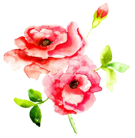 Red Roses flowers, watercolor illustration