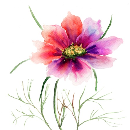 Beautiful Red flower, Watercolor painting Stock Photo