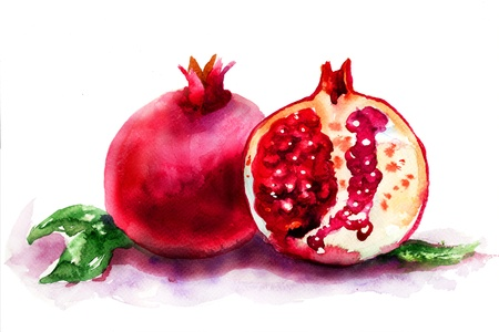 Ripe pomegranate fruit, watercolor illustration Stock Photo