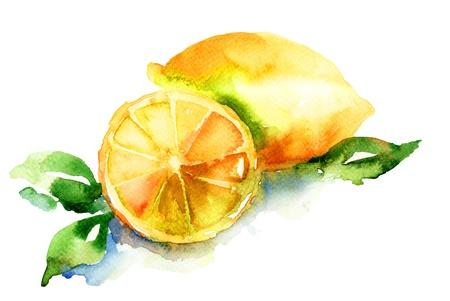 レモンの水彩画のイラスト
