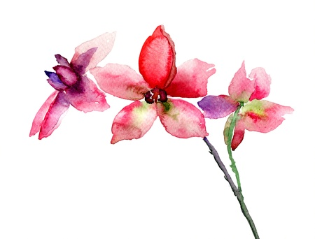 Pink orchids flowers, watercolor illustration Stock Photo