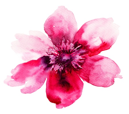 abstract flowers: Beautiful Pink flower, Watercolor painting  Stock Photo