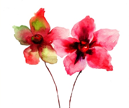 Stylized Red flowers illustration, watercolor painting Stock Photo
