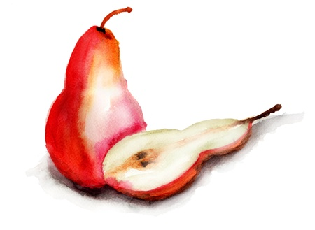 Illustration of pear illustration