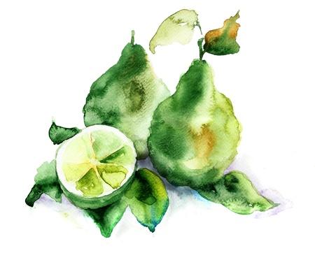 Bergamot vruchten, aquarel illustratie