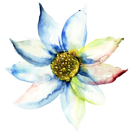 Summer flower, watercolor illustration Stock Illustration - 19063968