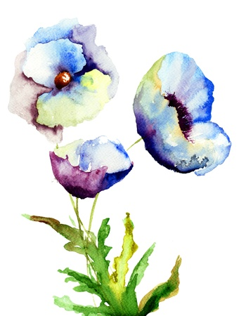 Beautiful Blue flowers, Watercolor painting Stock Photo - 19063967