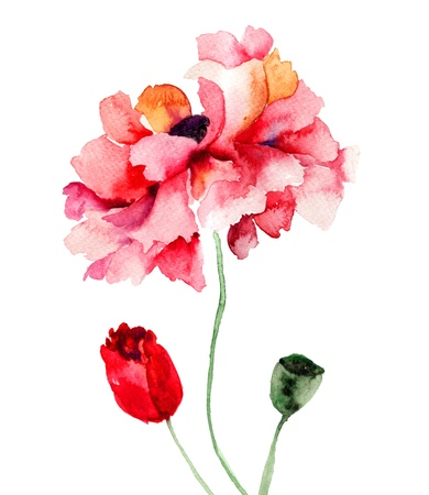 Colorful Poppy flowers, watercolor illustration  Stock Illustration - 19063542