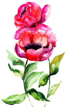 Beautiful Peony flowers, Watercolor painting  Stock Photo