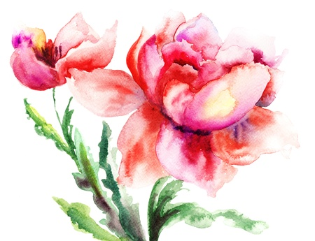 Red flowers, Watercolor painting