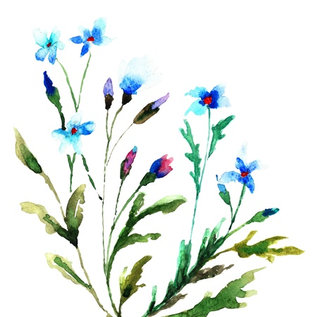 Mooie Blauwe bloem, schilderen van de waterverf