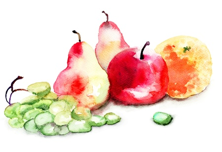 Watercolor illustration of fruit illustration