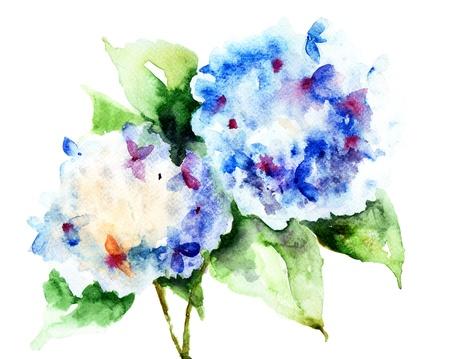 Beautiful Hydrangea blue flowers, watercolor illustration  Stock fotó