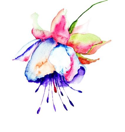 campanula: Campanula, watercolor illustration Stock Photo