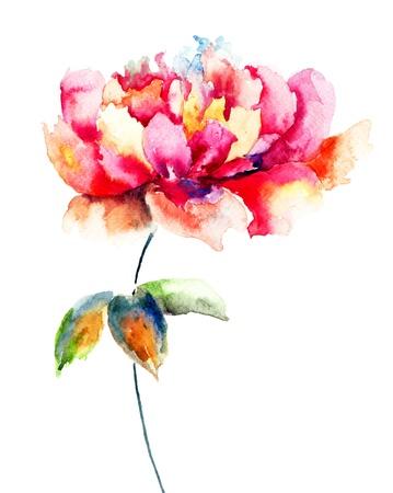 Hermosa flor rosa, pintura de la acuarela