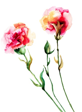 Beautiful Cloves flowers, watercolor illustration  Archivio Fotografico