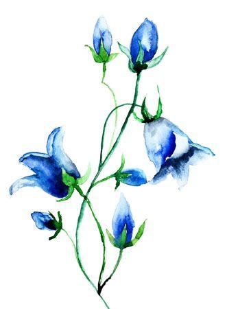 bluebells: Bell flower, watercolor illustration