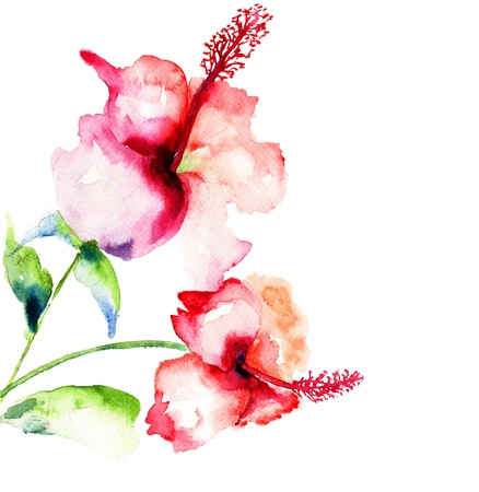 flower art: Red Hibiscus flowers,watercolor painting  Stock Photo