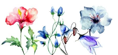 wild flowers: Original flowers, watercolor illustration Stock Photo