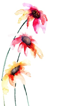 Beautiful colorful flowers, Watercolor painting Stock Photo