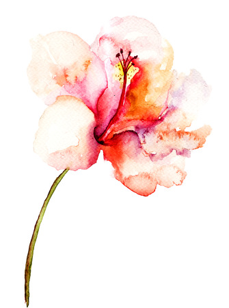 Decorative pink flower, watercolor illustration  illustration
