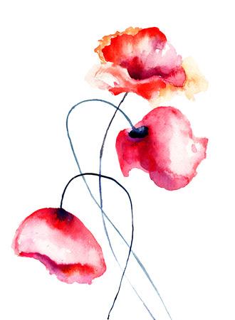 Kleurrijke Poppy bloemen, aquarel illustratie Stockfoto