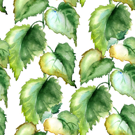 dioecious: Seamless wallpaper with Stinging nettle, watercolor illustration Stock Photo