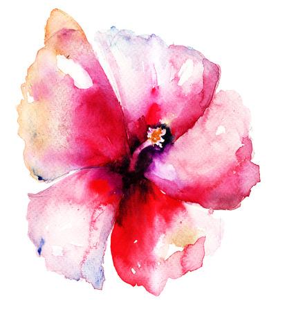Rode Hibiscus bloem, aquarel