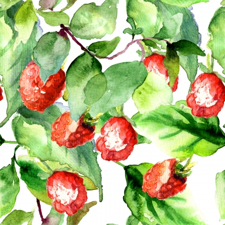 Seamless pattern with Raspberry, watercolor illustration  illustration